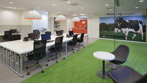 Design intérieur pratique vétérinaire : Wetering